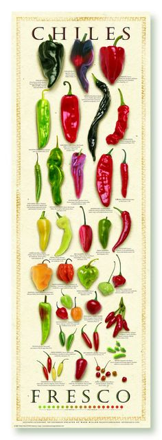 [ Fresh Chile Poster method When grilling food, the high temperat Mexican Kitchens, Mexican Dishes, Mexican Food Recipes, Real Food Recipes, Healthy Recipes, Cooking Tips, Cooking Recipes, Food Facts, Stuffed Hot Peppers
