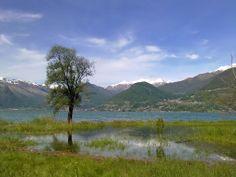 overflowed lake