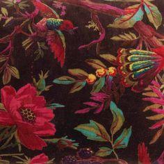 Bird of Paradise ChocolateVelvet Cushion Cover