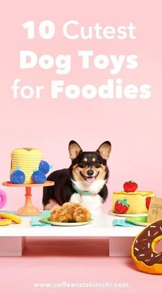 Cutest Dog Toys for Foodies