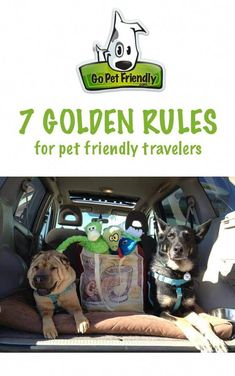 Whether you're considering your first pet friendly vacation or have been on the road with your furry friend for years, there are a handful of simple practices that make every trip a success. These are the golden rules that guide us in our adventures. I Love Dogs, Puppy Love, Road Trip With Dog, Camper, Dog Travel, Travel Tips, Travel Goals, Travel Hacks, Travel Advice