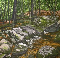 Brook Barrier by Neil Welliver
