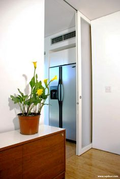 RAYDOOR :: Transparent Sliding Doors - Sliding Pocket (SP)