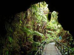 Participe de uma incrível excursão de bicicleta guiada no vulcão Kilauea no Hawaii Volcano National Park. Você explorará o vulcão Kilauea, de seu cume até o mar, enquanto pedala pela cratera ativa!