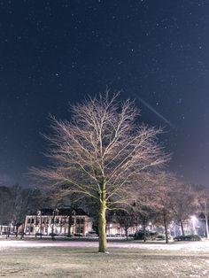 Vijf redenen om vanaf nu in de M-stand te fotograferen   Inspiratie   Zoom.nl Netherlands, Om, City, Plants, Nikon, Tattoo, Pictures, Night, The Nederlands