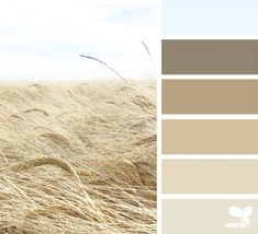Field Tones | Design Seeds