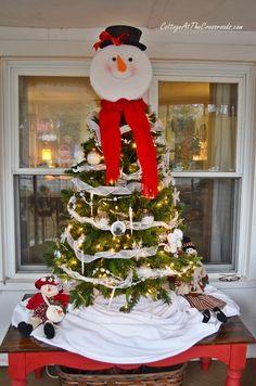 Top 5 Longest Lasting Christmas Trees | Christmas tree and ...
