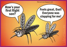 mosquito humor....   Wat would happen in the next level ? http://bugzapperworld.com/fly-swatter/