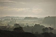 niebla matinal | by ipep