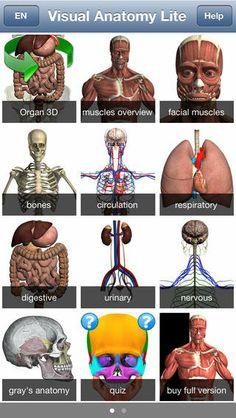 Anatomy Field Trip Assignment - Tackk