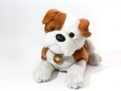We suspect you've never heard a pitch quite like this: New York's Heavenly Pals creates plush dog toys, in a variety of breeds, that also act as an urn for your dog's ashes. Big Twist, Pet Urns, Your Best Friend, Dog Toys, The Great Outdoors, Your Dog, Plush, Heavenly, Teddy Bear