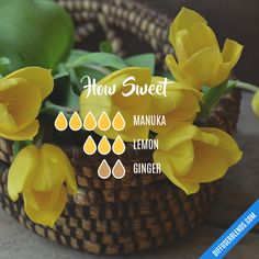 How Sweet - Essential Oil Diffuser Blend
