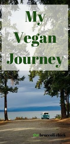 My 10 year vegan journey and how I decided to be vegan for so long