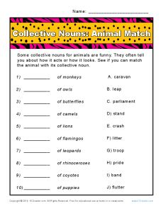 This worksheet has a zoo of collective nouns! Your student will select the correct collective noun for each animal. She can use the way the animal acts or looks as a hint. 3rd Grade Reading Comprehension Worksheets, Worksheets For Grade 3, Science Worksheets, Printable Worksheets, Teaching English Grammar, English Grammar Worksheets, Collective Nouns Worksheet, Grammar Anchor Charts, Animal Collective