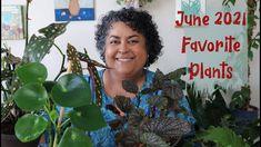 June 2021 Favorite Houseplants 🌱 and Surprise Update!🌱