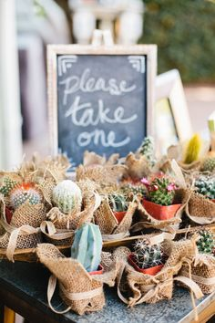 Mini cactus wedding favors for a desert wedding | Megan Welker Photography