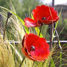 Simply beautiful set of garden sculptures consisting of 2 poppy flower heads on stems and 2 seed heads.Handmade and individually hand painted using recycled metals, these gorgeous poppies will add a pop of colour in your garden. You will receive 2 x closed seed pod on bending stems and 2 x poppy in full bloom. These can be placed at varying heights in your flower bed to create colour and interest in your garden. The poppies are imperfect in their beauty and we hope that our customers will…