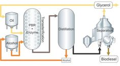 Biodiesel Catalyst Market 2017- Evonik, BASF, TSS Group, Dupont - https://techannouncer.com/biodiesel-catalyst-market-2017-evonik-basf-tss-group-dupont-2/