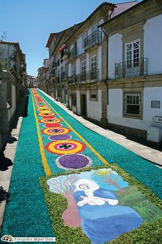Carpet Flowers for Corpus Christi ~ Ponte de Lima, Portugal Beautiful Places In The World, Places Around The World, The Places Youll Go, Travel Around The World, Places To See, Around The Worlds, Visit Portugal, Spain And Portugal, Portugal Travel