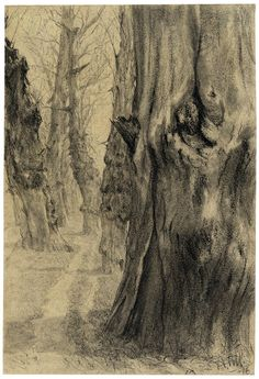 blastedheath: Adolph von Menzel (German, 1815-1905), Old Poplars in Winter, 1876. Pencil on beige paper, 206 × 140 mm.