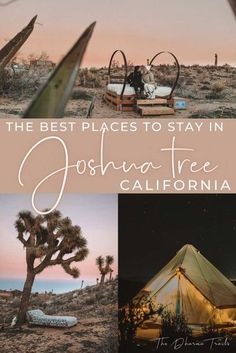Planning a trip to Joshua Tree National Park? Here are the best places to stay in the area. Whether you want to watch the sunset over the mountains, have an outdoor pool in the desert, or stay in an off grid eco friendly place, here are the 13 best airbnbs. | #joshuatree #USA #california National Parks Map, Joshua Tree National Park, Outdoor Fire, Outdoor Pool, Joshua Tree Airbnb, Us West Coast, Visit California, California Travel, Travel Usa