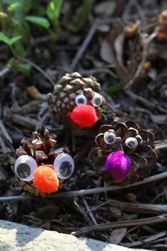 Use pine cones and some other odds and ends to create your very own Pine Cone Creatures.