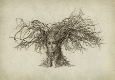 Find Dryad Surreal Humanoid Creature Tree Branches stock images in HD and millions of other royalty-free stock photos, illustrations and vectors in the Shutterstock collection. Branch Drawing, Nature Witch, Humanoid Creatures, Tree Woman, Ap Studio Art, Spirited Art, How To Draw Hair, Fantasy Creatures, Tree Branches