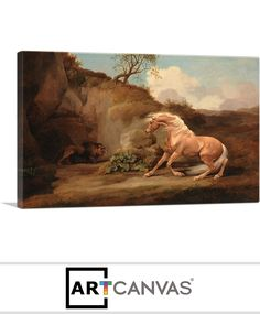 Ready-to-hang Horse Frightened by a Lion 1768 Canvas Art Print for Sale canvas art print for sale. Art Prints For Sale, Canvas Art Prints, Lion, Horses, Painting, Leo, Painting Art, Lions, Horse