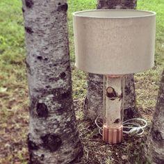 "5 Likes, 1 Comments - Bereza lamp (@berezalamp) on Instagram: ""Настольная лампа, полированная медь. Table lamp, birch, polished copper finish. #светильник…"""