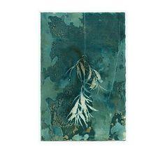 Cyanotype print DANGLING LEAVES original art #photography #art