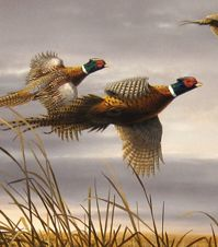 Hautman Brothers Wildlife Art