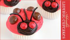 Modern Ladybug (or Lovebug) Party Theme