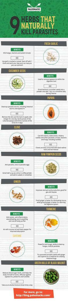 9 Herbs That Naturally Kill Parasites