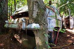 Motors . Walter Dean Lewis' North Georgia forest classic car graveyard