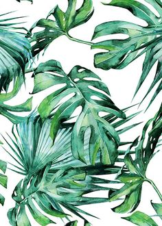 Tropical leaves pattern Poster