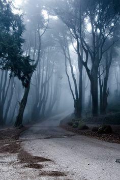 Der Weg ins Nichts...