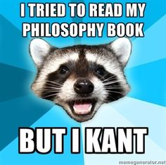 pun raccoon meme - lolol