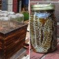 beehive in a jar fb