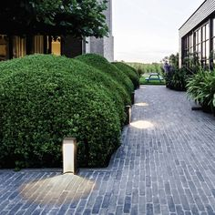 Aula surprises with a distinctive and widespread lighting pattern on the floor. Driveway Lighting, Pathway Lighting, Outdoor Lighting, Garden Lighting Inspiration, Delta Light, Landscape Architecture Design, Outdoor Gardens, 1, Backyard