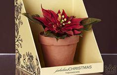 #xmas Vaso de Chocolate by The King Cake   Dicas de Presentes para o Natal - Feliz com Pouco