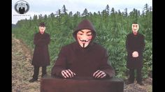 Anonymous : Truth About Cannabis