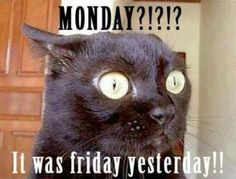 Monday?!?!?! It Was Friday Yesterday!!