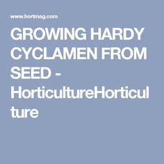 GROWING HARDY CYCLAMEN FROM SEED - HorticultureHorticulture