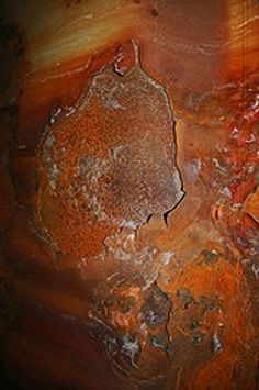 burnt orange rust natural state of things