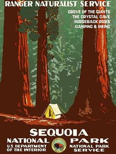 1930's - Sequoia National Park - Travel Advertising Poster