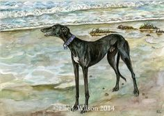 A very special moment  Greyhound Dog Print  5 x by AlmostAnAngel66, £15.00