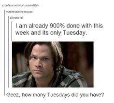 Supernatural Tuesday!