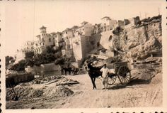 Building the Paseo Maritimo 1950