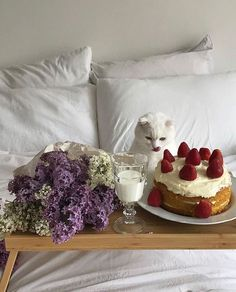 Еда как искусство (@foodianse) • Instagram photos and videos Cute Apartment, Pretty Photos, Pet Puppy, Beautiful Babies, Love Food, Cats Of Instagram, Wines, Brunch, Cute Animals