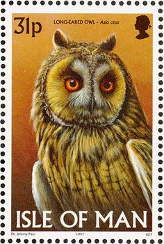 Items similar to Long-Eared Owl Asio otus Isle Of Man -Handmade Framed Postage Stamp Art 8084 on Etsy Long Eared Owl, Paper Owls, Postage Stamp Art, Vintage Stamps, Owl Art, Stamp Collecting, Bird Feathers, Altered Art, Birds